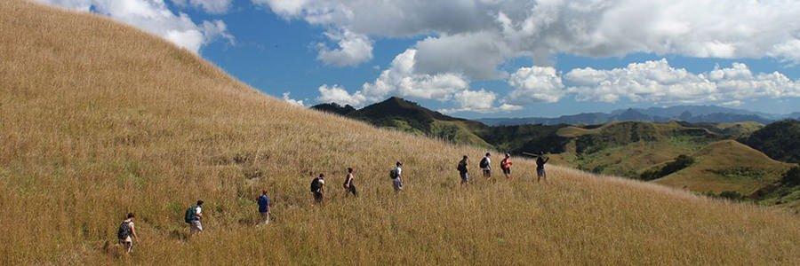 Talanoa Treks Fiji - Grasslands