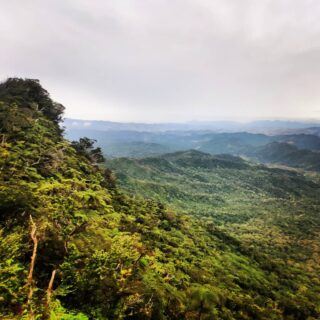 We're rightly worried about deforestation in Fiji, and need to ensure future generations can be uplifted and inspired by sweeping views of tree-covered mountains, valleys, and hills, and the life that they support. .. #mttomaniivi #tomaniivi #hikingadventures #hiking #talanoatreks #trampingfiji #tramping